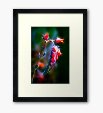 A FLARE FOR HORTICULTURE Framed Print