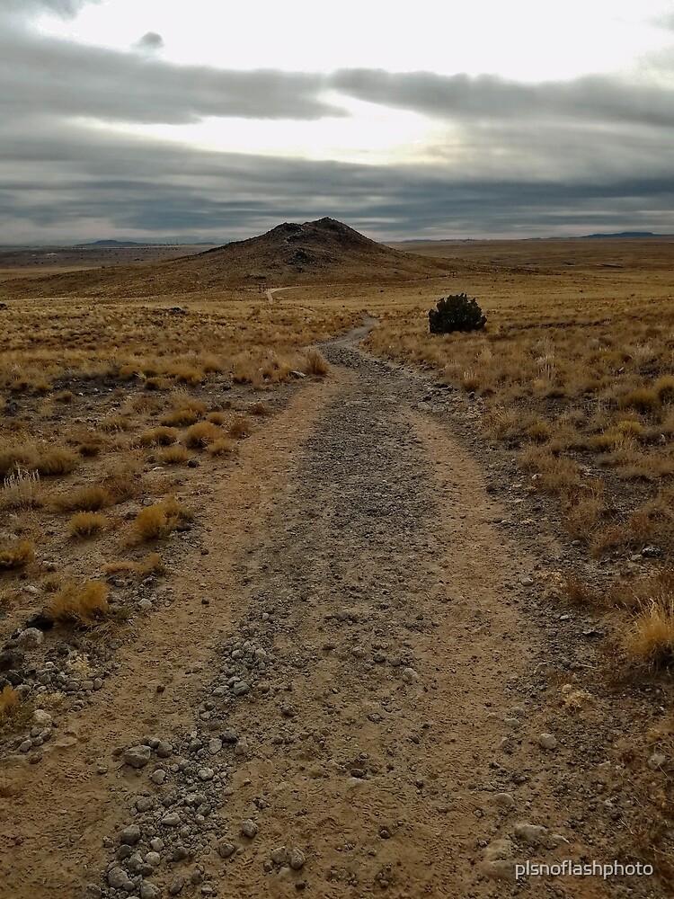 New Mexico Volcano I by plsnoflashphoto