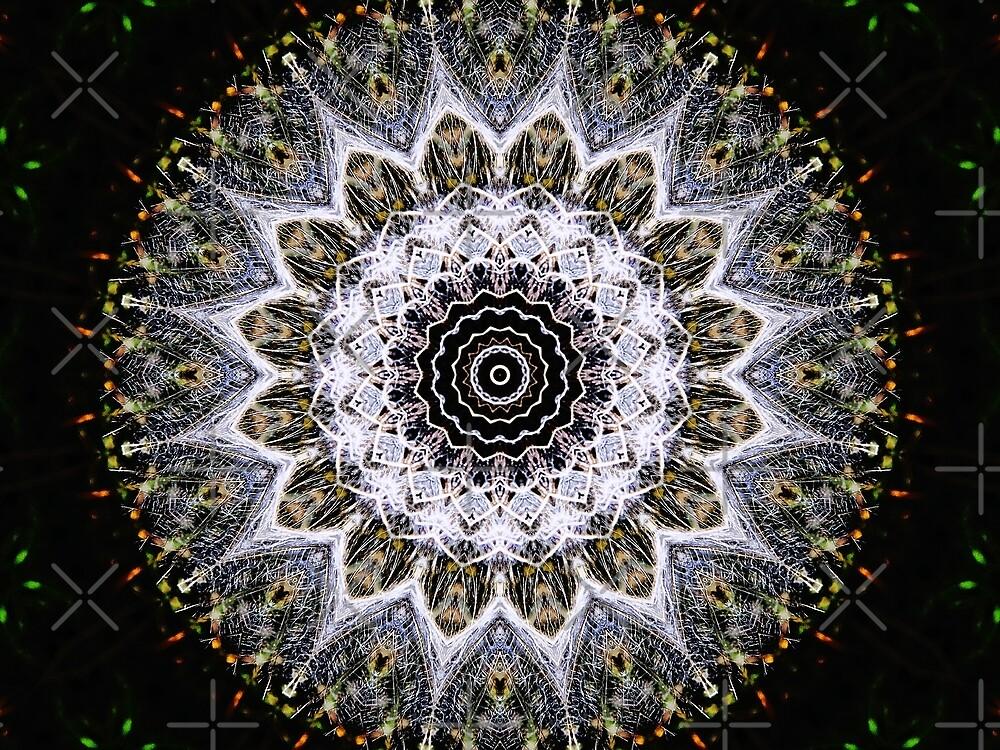 Dandelion Fluff Manipulation by Karen Stahlros