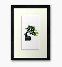 Bonsai Tree Graphic Design Framed Print