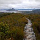 Lake Peddar, Tasmania by Richard  Stanley