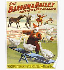 Vintage poster - Circus Poster