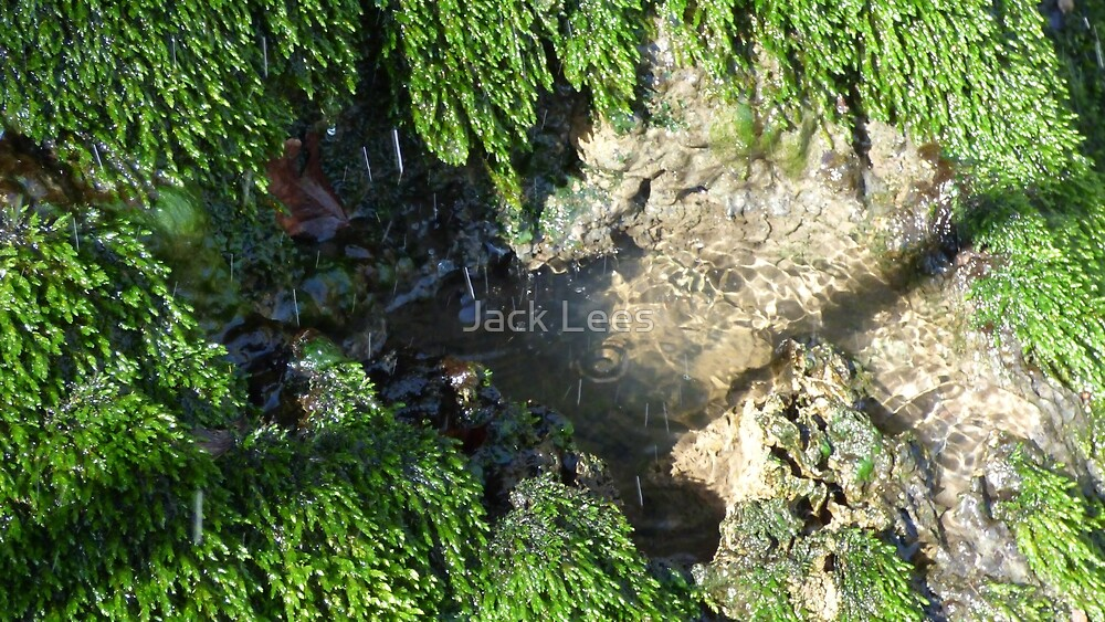 Clear Water by Jack Lees