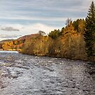 River Dee by David Lewins