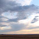 Living Skies by Ellinor Advincula