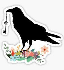 Raven with key. Sticker