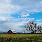 Red Barn In Spring by Pamela Hubbard