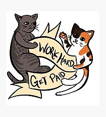 Work Hard, Get Paid Cats Photographic Print