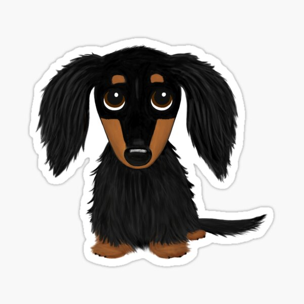 Black and Tan Long Haired Dachshund Sticker