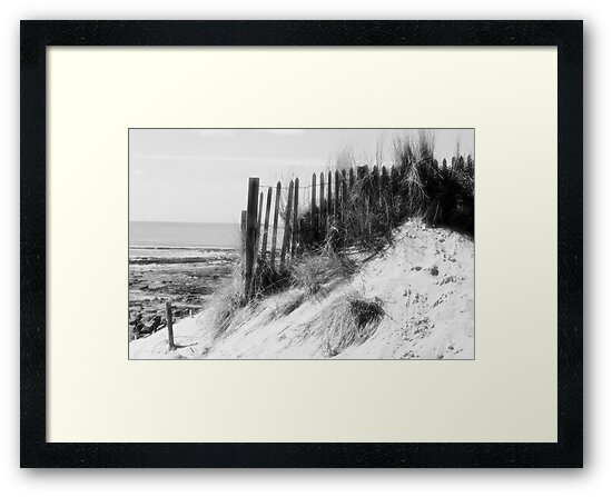 From the Dunes - Black and White by Pamela Jayne Smith