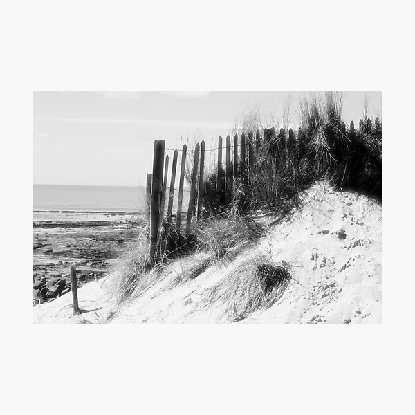 From the Dunes - Black and White Photographic Print