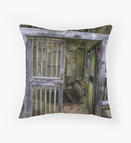 The Gate - St Gregory's Minster Throw Pillow