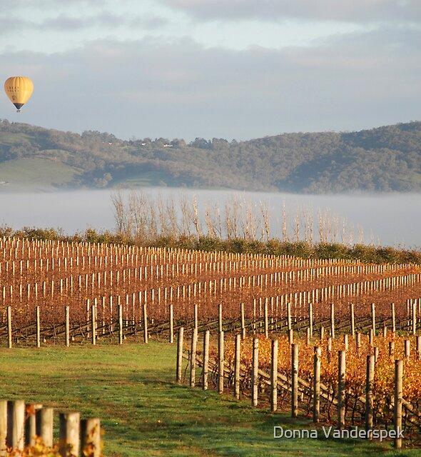 Ballooning over the Yarra Valley by Donna Vanderspek
