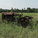 Out to Pasture© by walela