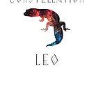 Constellation Leo Stargazer by OnlineGeckos
