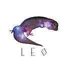 Constellation Leo Stargazer Leopard Gecko by OnlineGeckos