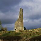 ruin's at trim by Finbarr Reilly