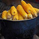 Corn and Pot by Chamika Amarasiri