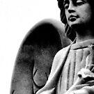 Stone Angel by Milan Hartney