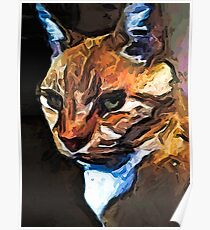 The Gold Cat with the Stage Presence Poster