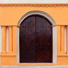 The Doors Of Las Flores - 1 ©  by © Hany G. Jadaa © Prince John Photography