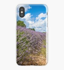 Summer lavender field in Provence, France iPhone Case/Skin