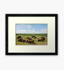 This Way Everyone! Framed Print