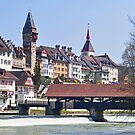 Bremgarten at early Spring by Rosy Kueng Photography