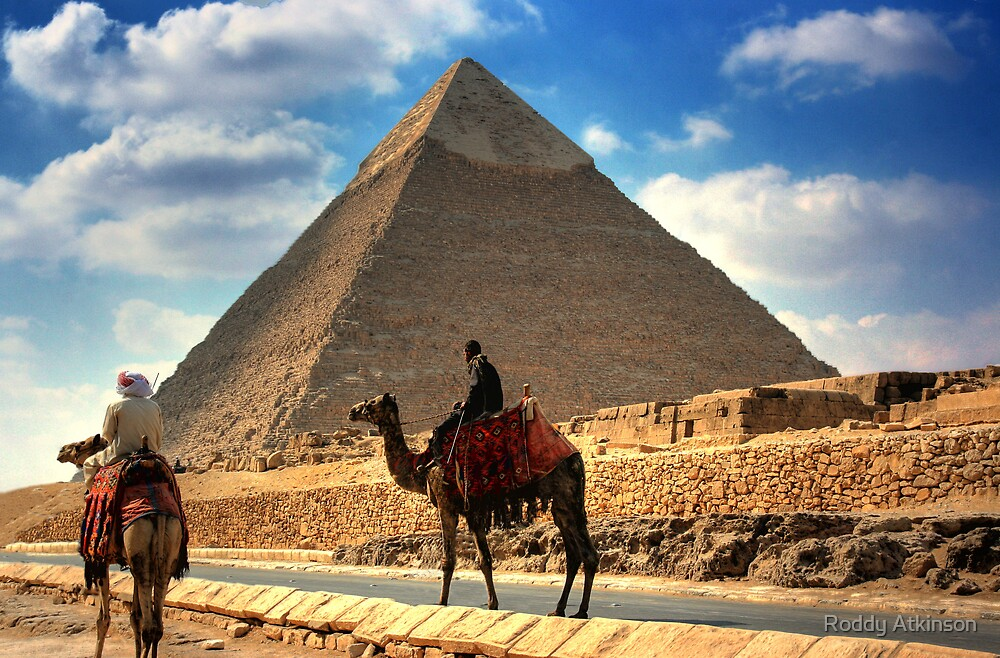 Camels and Khafre by Roddy Atkinson