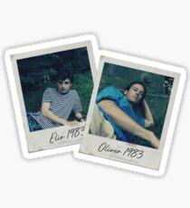 Elio & Oliver Summer Polaroids  Sticker