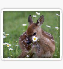 Gracie Flower Sticker