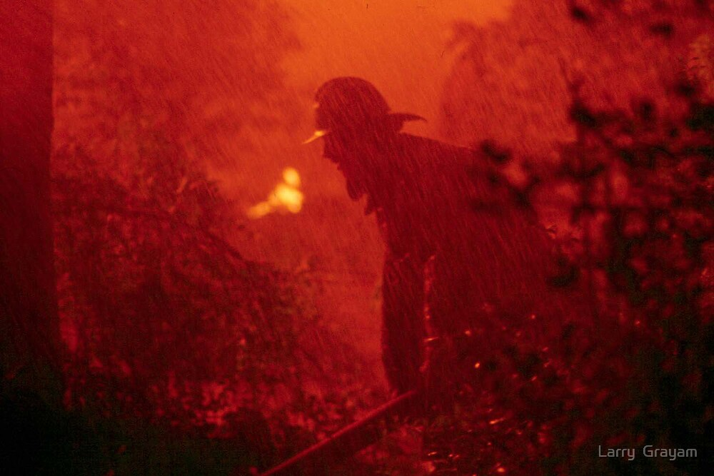 Firefighter in rainstorm by Larry  Grayam