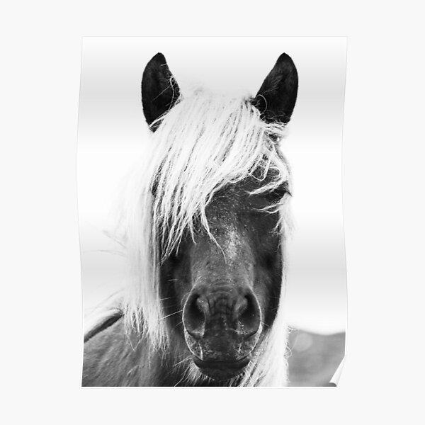 Wild Horses, Horse print, Horse art, Wall art, Wall decor, Trendy print, Animal print, Interior Poster