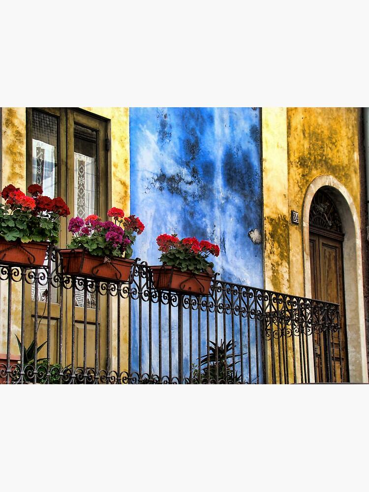 balcone fiorito by rapis60