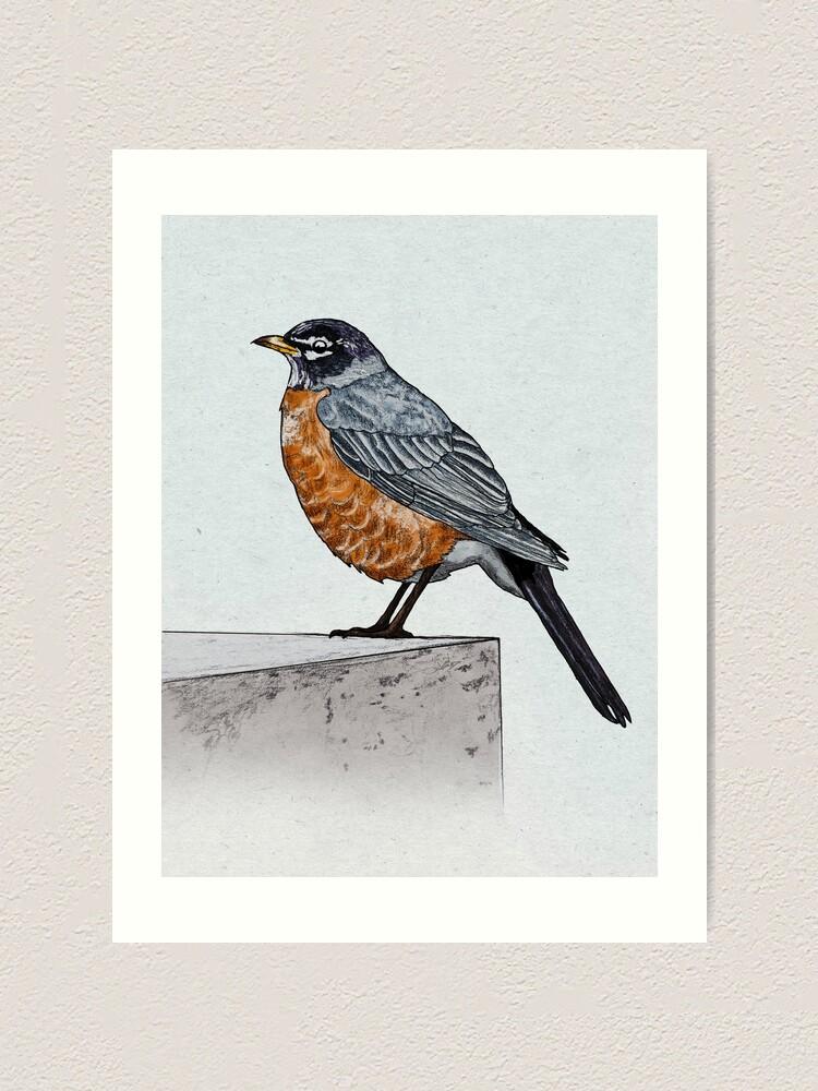 Alternate view of Robin Art Print