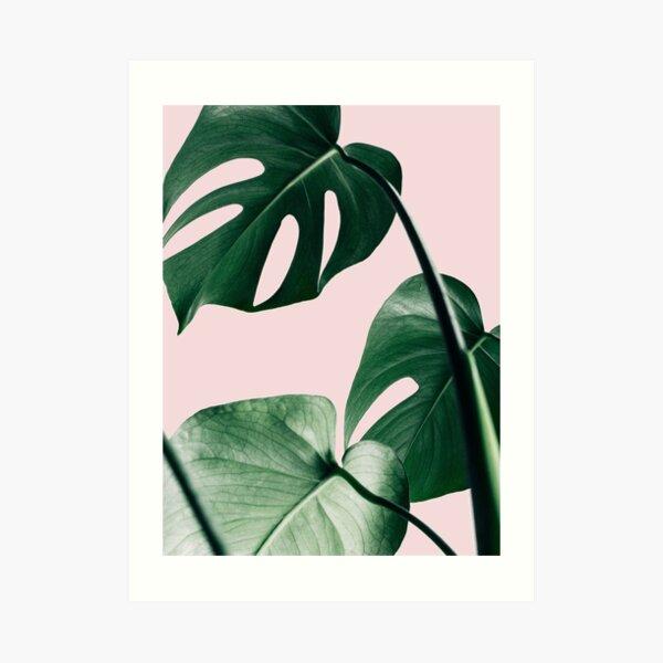 Monstera leaves, Pink, Tropical leaves, Leaf, Modern art, Wall art, Print, Minimalistic, Modern, Scandinavian print Art Print