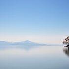 Misty Lake Geneva.....Switzerland.....20th April 2018 by Imi Koetz