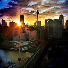 Sydney Sunrise by Throwing  Buckets Magazine