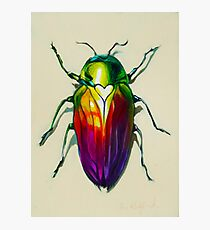 Love Bug Photographic Print