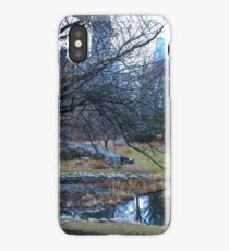 Winter Reflections iPhone Case/Skin