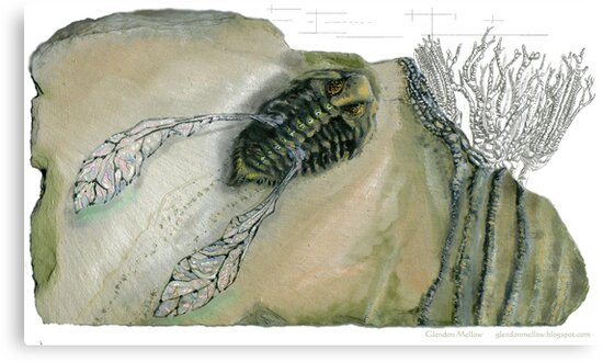 Mythical Flying Trilobite Fossil III by Glendon Mellow