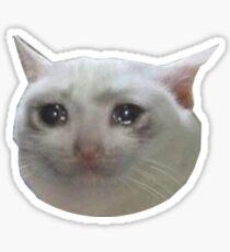 weinende Katze. jpg Sticker