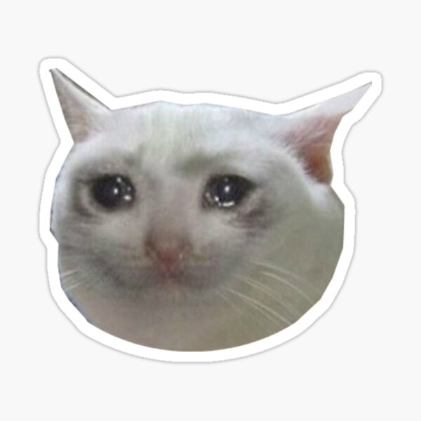 crying cat . jpg Sticker