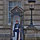 Buckingham Palace Guard by b8wsa