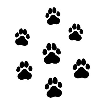 Dog`s Paws  by MarynArts
