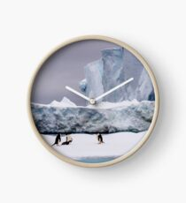 Adelie penguins in front of a tabular iceberg in Antarctica Clock