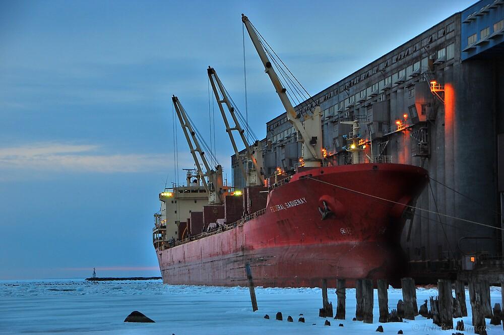 MV Federal Saguenay by Ian Benninghaus