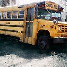 Appalachian School Bus  by ArtbyDigman