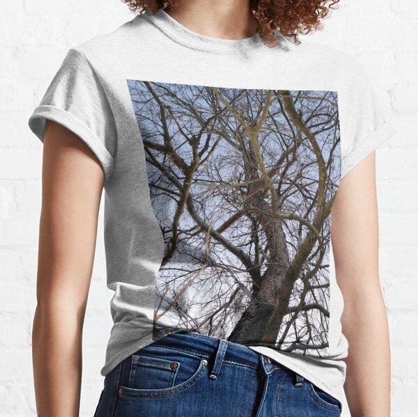 Shagbark Hickory Classic T-Shirt