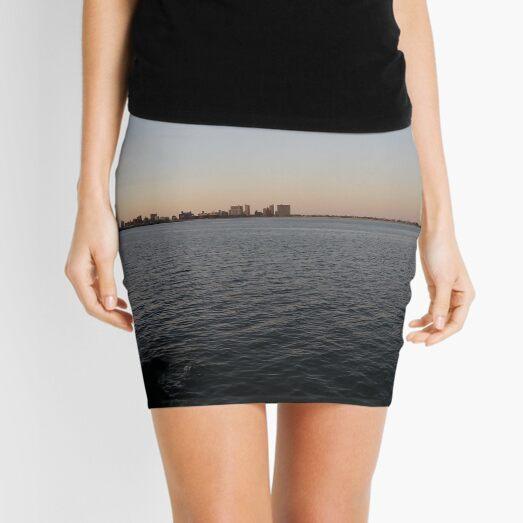 See Mini Skirt